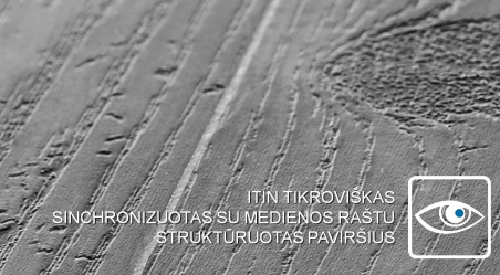 Vinilo danga Wicanders Wood Hydrocork Ąžuolas Sawn Twine