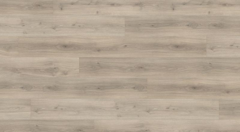 Laminuotos grindys Haro Tritty 100 Ąžuolas Emilie Velvet Grey