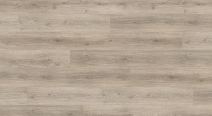Laminuotos grindys Haro Tritty 100 Ąžuolas Emilia Velvet Grey
