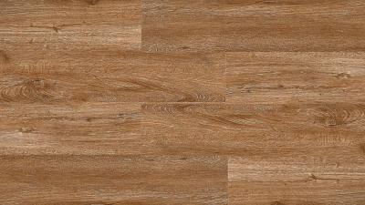Akustinė SPC vinilinė grindų danga Nomad Flo Sabadell nuotrauka