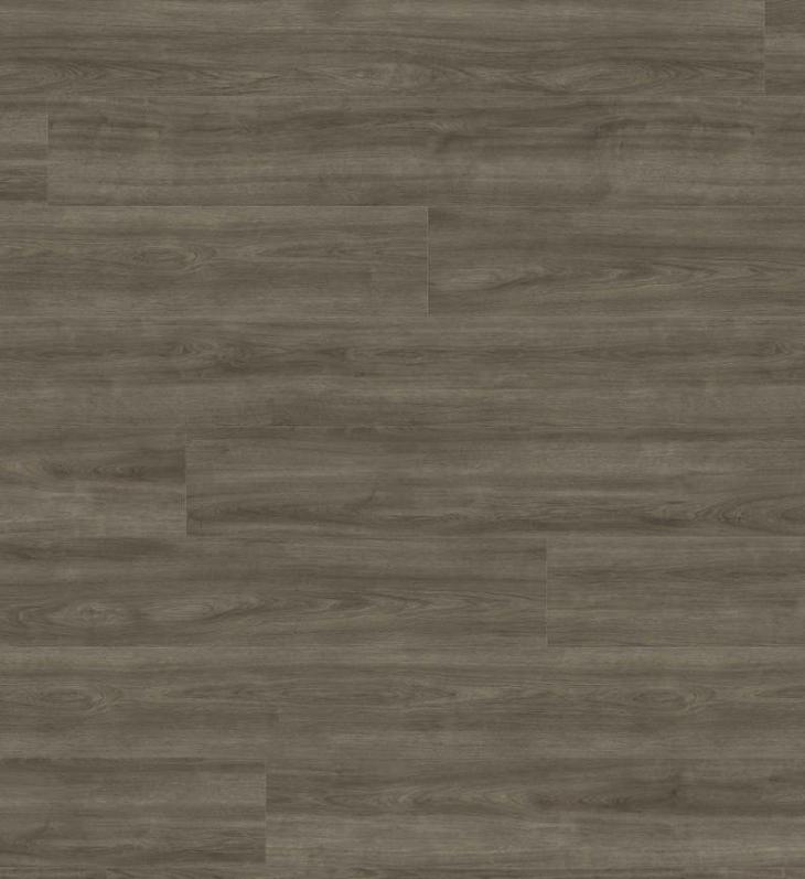 Laminuotos grindys Haro Tritty 200 Aqua Ąžuolas Eleganza Antique Grey